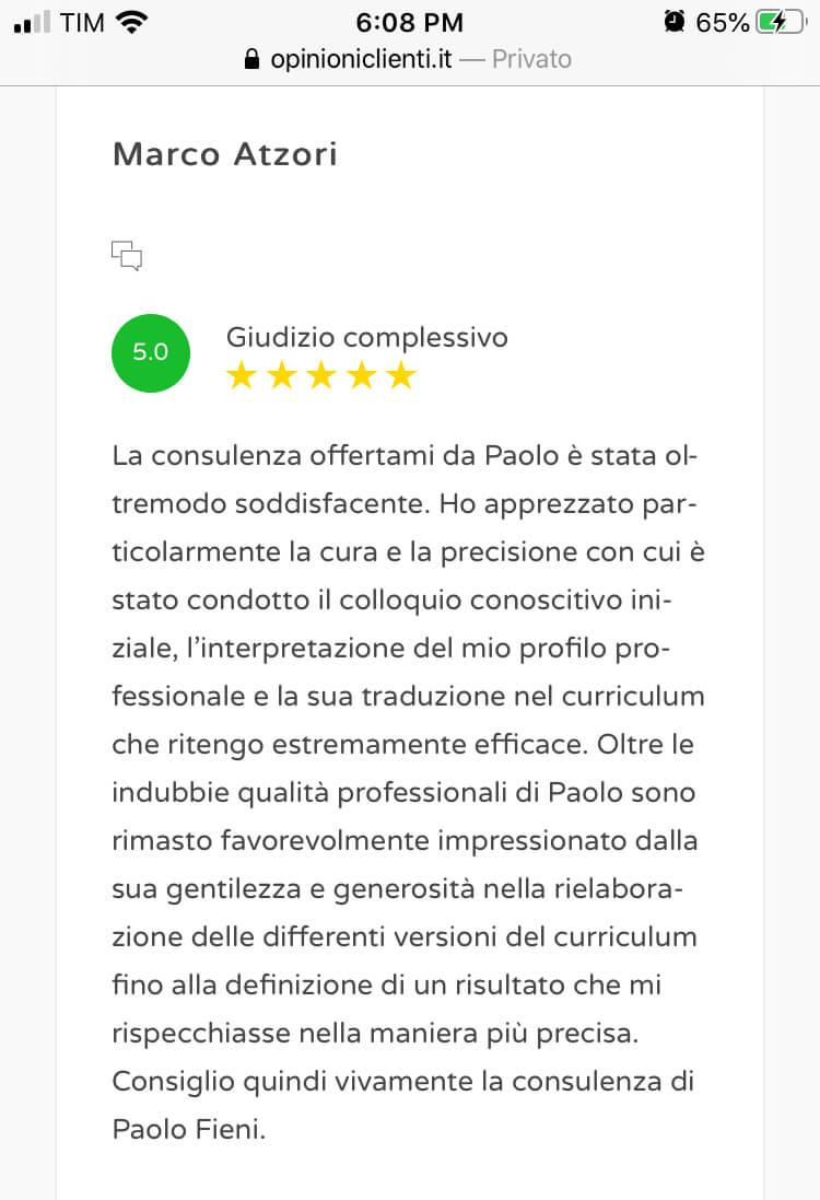 Review scrittura cv 03